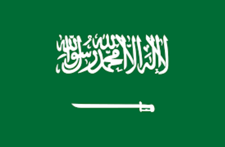 Saudi Arabia Business Visa Requirements